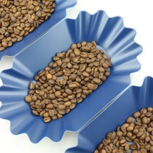 Rhino Bean Tray Blue - 12 Pack_2 Ashcoffee